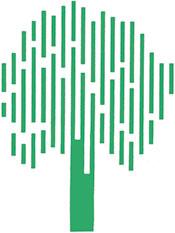 Cipressi Baumschulen