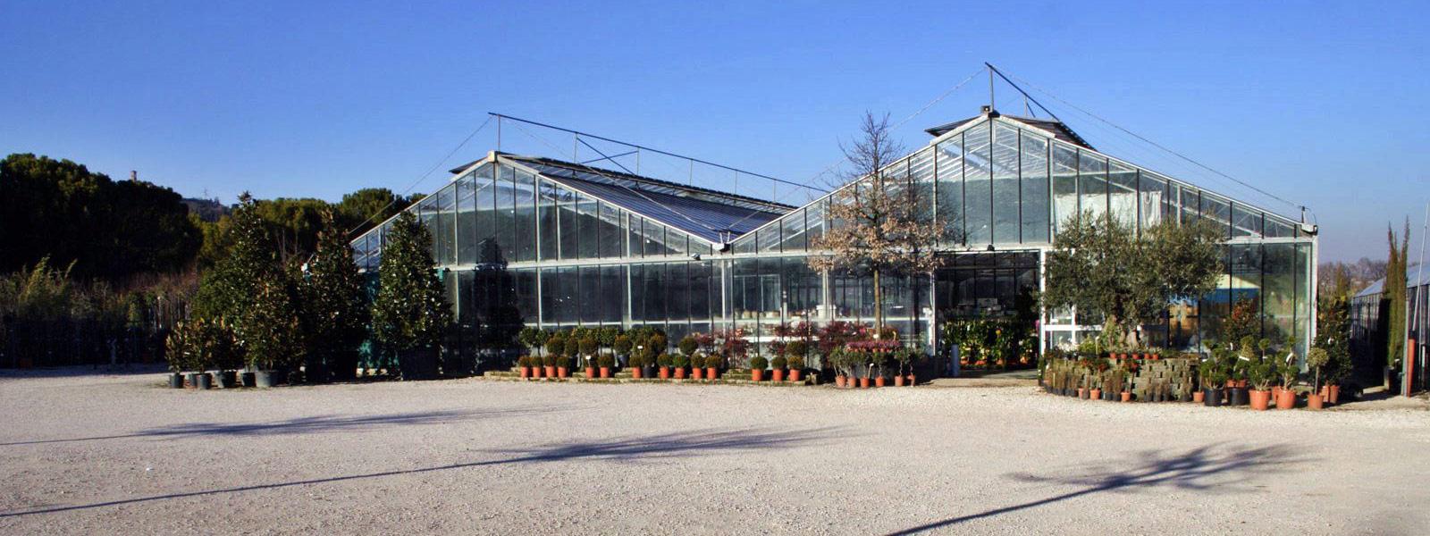 Vivai perugia ideaverde for Idea verde garden center